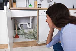 mold-under-kitchen-sink
