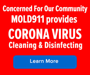 corona virus cleaning and santizing