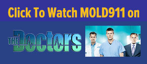 mold911 on the doctors toxic mold episode